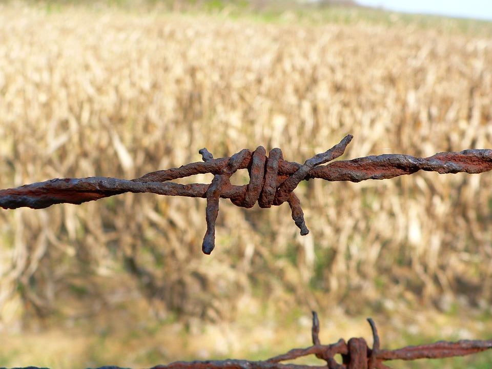 Кияни вкрали землю у громади Херсонщини