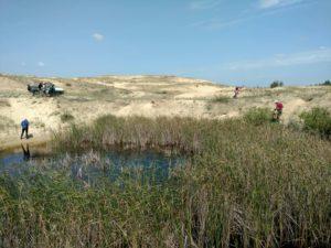 Ученые искали в Олешковских песках краснокнижные растения