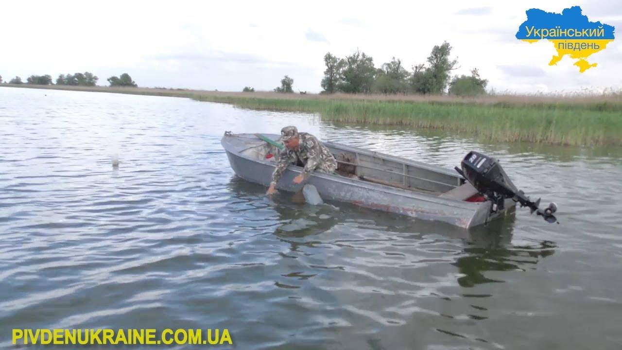 В акваторії Дніпра встановили майже 2 тисячі штучних нерестових гнізд