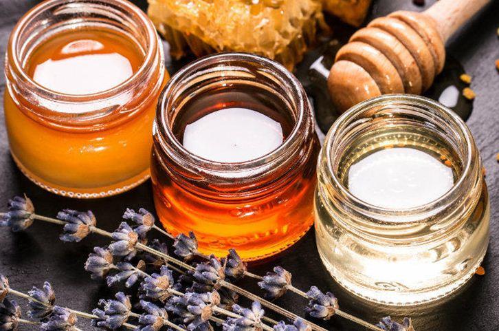 Пасічники Херсонщини очікують на гарний врожай меду (Відео)
